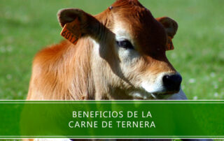 beneficios de la carne de ternera